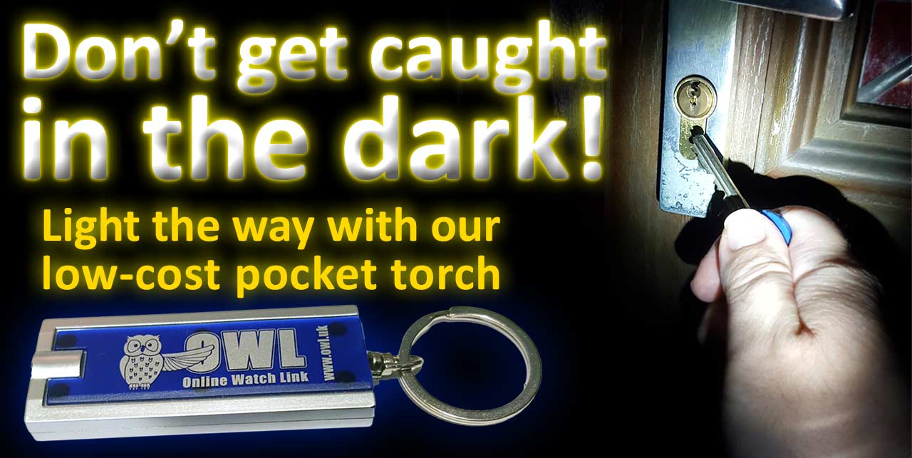 Bright LED pocket torch keyring